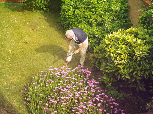 Gardening.Mariegriffiths.WMC