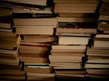 stackofbooks.Andrei.D40.Flickr