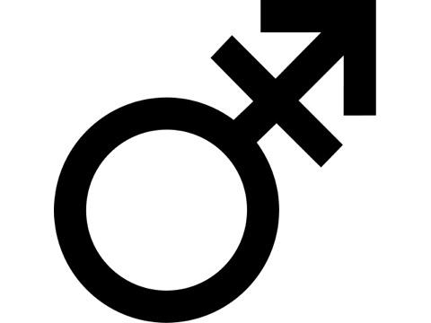Transgender_symbol.PublicDomain