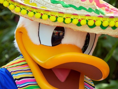 DuckSombrero.JoePenniston.Flickr