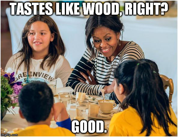 michelle obama racist thesis I would like to discuss michelle obama's college thesis and find out what people see as racist about it in obama's thesis, she sought to quantify how the attitudes of black princeton alumni changed after graduation in regard to race relations and social change.