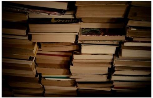 stackofbooks.Andrei.D40