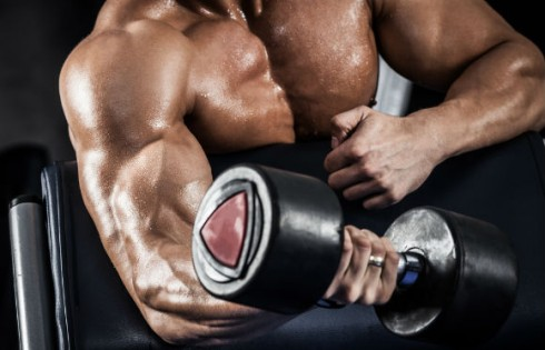 bicep-muscle-weight.Maksim_Toome.Shutterstock