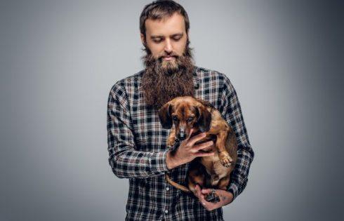 hipster-dog-shutterstock